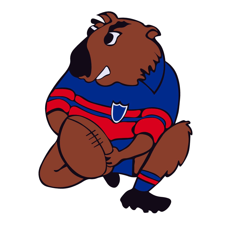Mudgee Wombats
