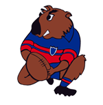 Mudgee Wombats logo