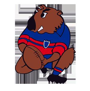 Mudgee Wombats Mascot - ERL